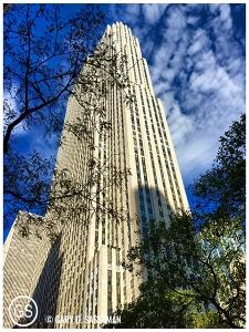 NYC15_19