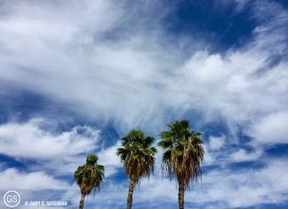023_Glendale