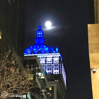 026_nyc2016_moonlight