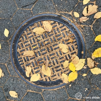 009_nyc2016_cp_manhole