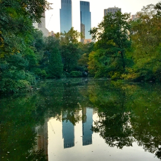 020_nyc2016_cp_reflection